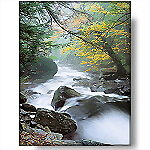 Misty River Morning, 350-Piece Puzzle