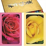 Springbok� Roses Bridge Jumbo Index Playing Cards